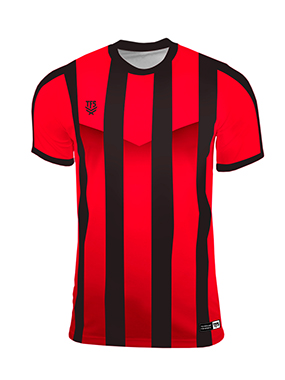 Camiseta Futbol TFS España